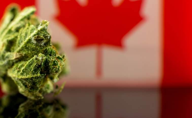 757z468_1539661074_canada-cannabis.jpg